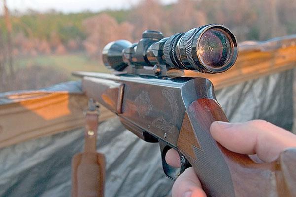 شکار غیرقانونی در قانون مدنی